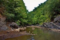 La rivière de Vilasha avec de beaux rivages Photos libres de droits
