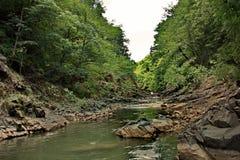 La rivière de Vilasha avec de beaux rivages Photographie stock
