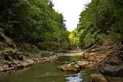La rivière de Vilasha avec de beaux rivages Photos stock