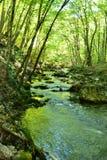 La rivière emprisonnée dans les roches Photo libre de droits