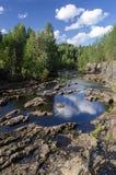 La rivière et la forêt sur la plage Images libres de droits