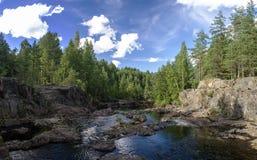 La rivière et la forêt sur la plage, panorama Images stock