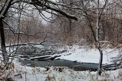 La rivière et les arbres dans la neige ont couvert George Wyth State Park photo libre de droits