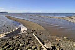 La rivière fonctionne dans la mer Images libres de droits