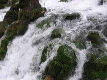 La rivière Grza en Serbie Images stock