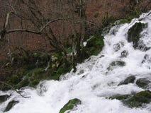 La rivière Grza en Serbie Photographie stock libre de droits