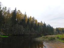 La rivière Oredezh Photographie stock