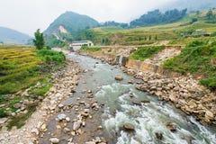 La rivière peu profonde de roche dans la PA de SA, Vietnam a entouré par des terrasses de riz Images libres de droits