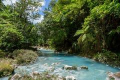 La rivière Rio Celeste de turquoise photos libres de droits
