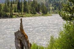 La rivière Snake Image libre de droits