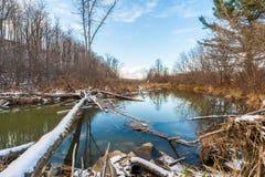 La rivière sous le ciel bleu Images libres de droits
