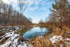 La rivière sous le ciel bleu Photo stock