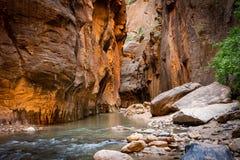 La rivière spectaculaire et renversante de Vierge tisse par les étroits, Zion National Park, Etats-Unis, le bas d'aspect de paysa images libres de droits