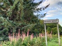 La rivière Spey en Ecosse Image libre de droits