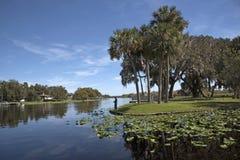 La rivière St Johns dans le comté de Volusia la Floride Etats-Unis Images stock