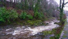 La rivière Tavy photo stock