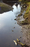 La rivière tranquille Coquet la scène, Warkworth, le Northumberland photo libre de droits