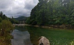 La rivière tranquille Prut parmi la forêt de montagne photo libre de droits