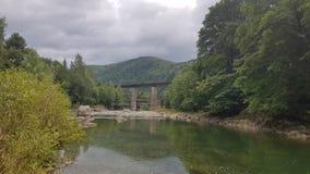 La rivière tranquille Prut parmi la forêt de montagne images stock