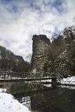 La rivière traversant la neige a couvert le paysage d'hiver dans la forêt Photographie stock libre de droits