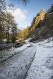 La rivière traversant la neige a couvert le paysage d'hiver dans la forêt va Image libre de droits