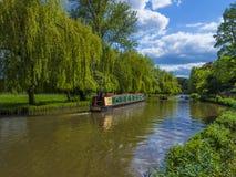 La rivière Wey Guildford, Surrey, Angleterre photographie stock libre de droits