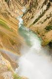 La rivière Yellowstone Image libre de droits