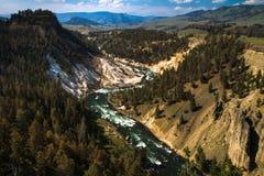 La rivière Yellowstone Photographie stock libre de droits