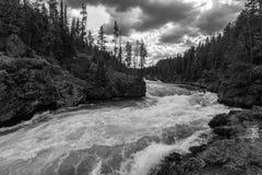 La rivière Yellowstone Images libres de droits