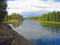 La rivière Yellowstone bien qu'un pré vert photos libres de droits