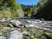 La rivière de Downie Photos libres de droits