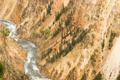 La rivière Yellowstone Grand Canyon du parc national du Wyoming Photographie stock libre de droits