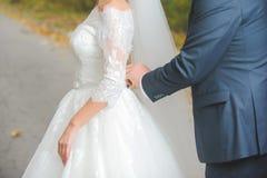 La robe de Buttoning Bride de marié photo libre de droits