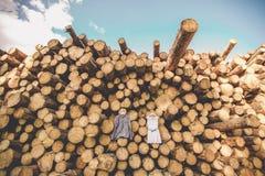 La robe du ` s de jeune mariée accroche sur des arbres Photo stock
