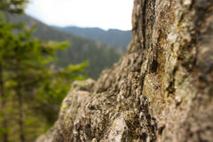La roca Fotografía de archivo