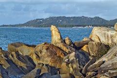La roca de abuelo, un pene formó el pilar Imágenes de archivo libres de regalías