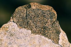 La roca de la piedra caliza resistió a asemejarse a una rana o a un sapo foto de archivo libre de regalías