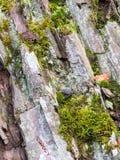 La roca en filósofos se arrastra en Medebach, Sauerland Fotos de archivo