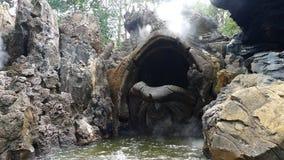 La roca formada como una tortuga Imagen de archivo