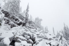La roca resbala en el bosque del invierno Imagenes de archivo