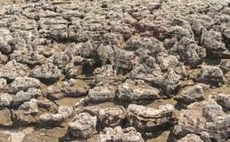 La roccia è stata erosa da pioggia, il vento, l'acqua, per fa il fondo Fotografia Stock Libera da Diritti