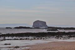 La roccia bassa Immagine Stock