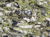 La roccia di marmo bianca ha ricoperto dai licheni crostosi gialli e neri Fotografia Stock