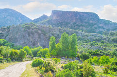 La roccia di Pinara fotografia stock libera da diritti