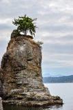La roccia di Siwash a Stanley Park a Vancouver del centro immagine stock