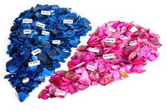 La roccia rosa e blu ha diviso il cuore che viene insieme Metà di concetto due che creano un'unione o un'amicizia romantica con l Immagini Stock