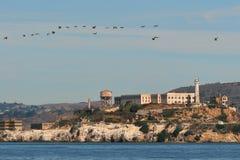 La roccia. San Francisco, S.U.A. Fotografia Stock Libera da Diritti