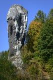 La roche a appelé Maczuga Herkulesa en Pologne Photographie stock libre de droits