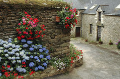 La Roche-Bernard (Brittany). La Roche-Bernard (Morbihan, Brittany, France): old typical house with red flowers Stock Images