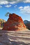La roche célèbre du grès rouge Photos libres de droits